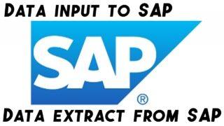 SAP transacion extract
